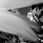Pre boda en Iscar, Valladolid, realizada por el fotógrafo de bodas en Extremadura Johnny Garcia en 2016, Marta y Oliver abrazados, en primer plano un girasol, foto destacada