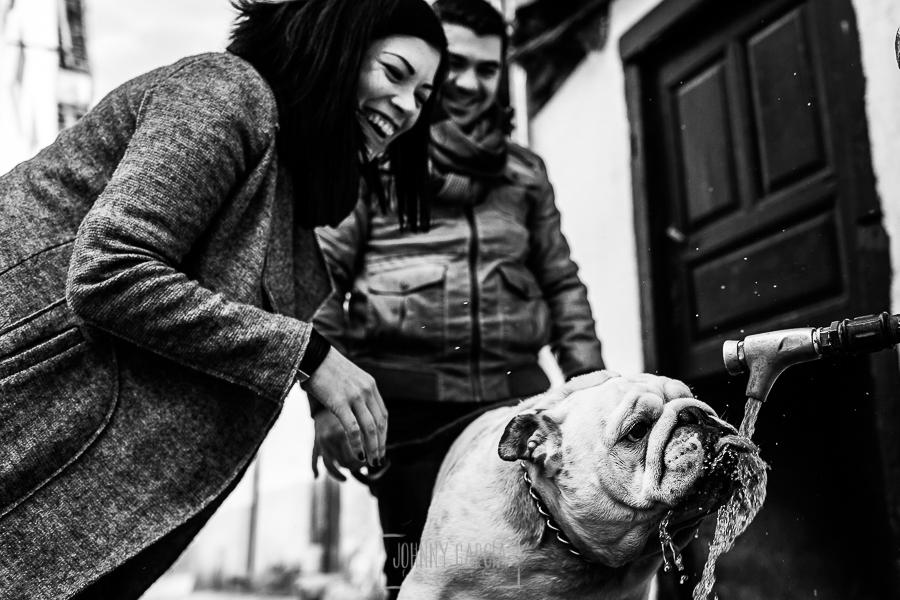 Pre boda en Hervás de Tamara y David realizada por Johnny García, mejor fotógrafo de bodas en Extremadura, la pareja riendo mientras el perro bebe agua