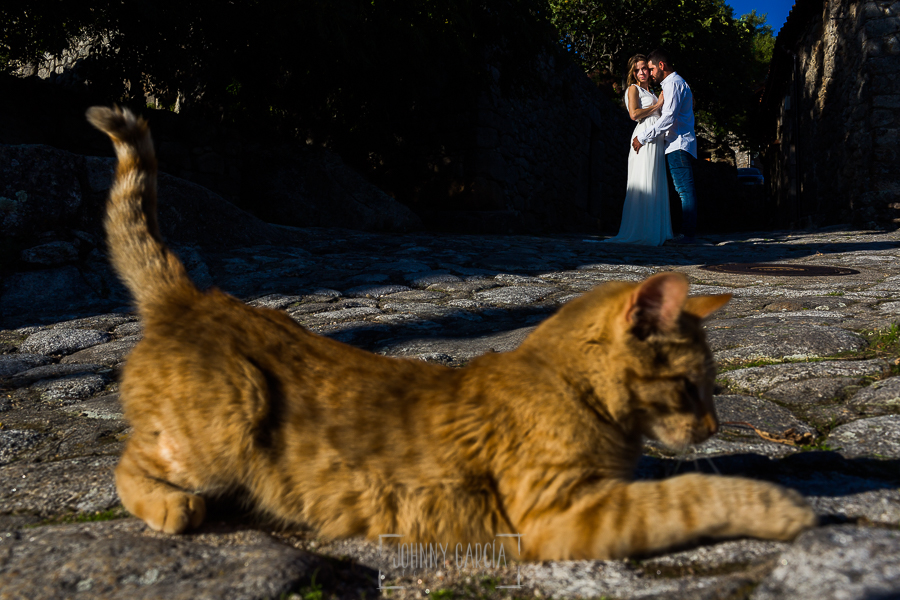 Boda en Hervás y postboda en Trevejo de Sofía y Charly realizada por Johnny García, fotógrafo de bodas en Extremadura, los novios al fondo, en un primer plano un gato callejero