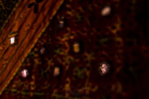 Boda en Granada de Marta y Mauricio realizada por Johnny García, fotógrafo de bodas en Granada, un reflijo de Marta en un pañuelo árabe