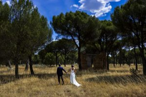 Boda en Íscar, Valladolid, de Marta y Oliver realizada por Johnny Garcia, fotógrafo de bodas en Valladolid, los novios paseando por un pinar cerca de ïscar