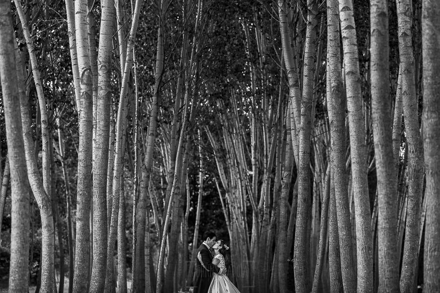 Boda en el Monasterio de Guadalupe de Ana Belén y Javier realizada por el fotógrafo de bodas en Extremadura Johnny García, los novios en una chopera