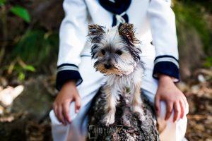 Fotos de comunión, comuniones Johnny García, fotógrafo en Extremadura, detalle de una mascota