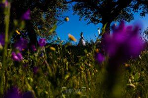 Fotos de comunión, comuniones Johnny García, fotógrafo en Extremadura, flores en una dehesa