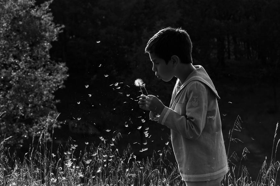 Fotos de comunión, comuniones Johnny García, fotógrafo en Extremadura, jugando con las flores