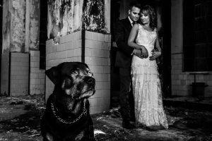 Bodas en Béjar, de Gema y Alberto realizada por el fotógrafo de bodas en Béjar, Salamanca, Johnny García, sesión de postboda en una fábrica textil de Béjar, los novios detrás de su perro Drako.