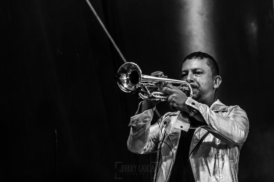 Fotografías de los directos de la orquesta Diamante el Show del Calvo en Candelario y Torrecillas de la Tiesa realizadas por el fotógrafo en España Johnny García. El trompeta.