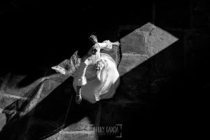 Comunión en Guijuelo de Leticia, realizada por Johnny García, fotógrafo de comuniones en Guijuelo. Leticia baila en la cima de un castillo.