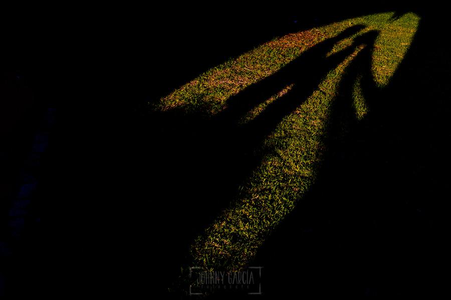 Boda en Hacienda de Regla, Sevilla, de Jessica y Sergio, Johnny García, fotógrafo de bodas en Sevilla; la sombra de los novios sobre el césped.