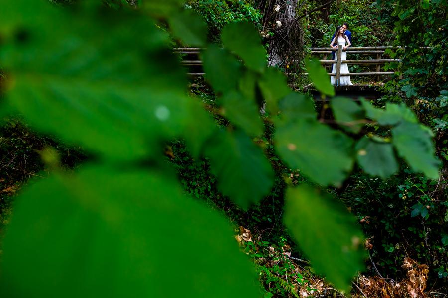 Boda en Hervás de Yolanda e Ignacio, foto realizada por el fotógrafo de bodas en Cáceres Johnny García. Una foto de la pareja entre las hojas de un olmo.